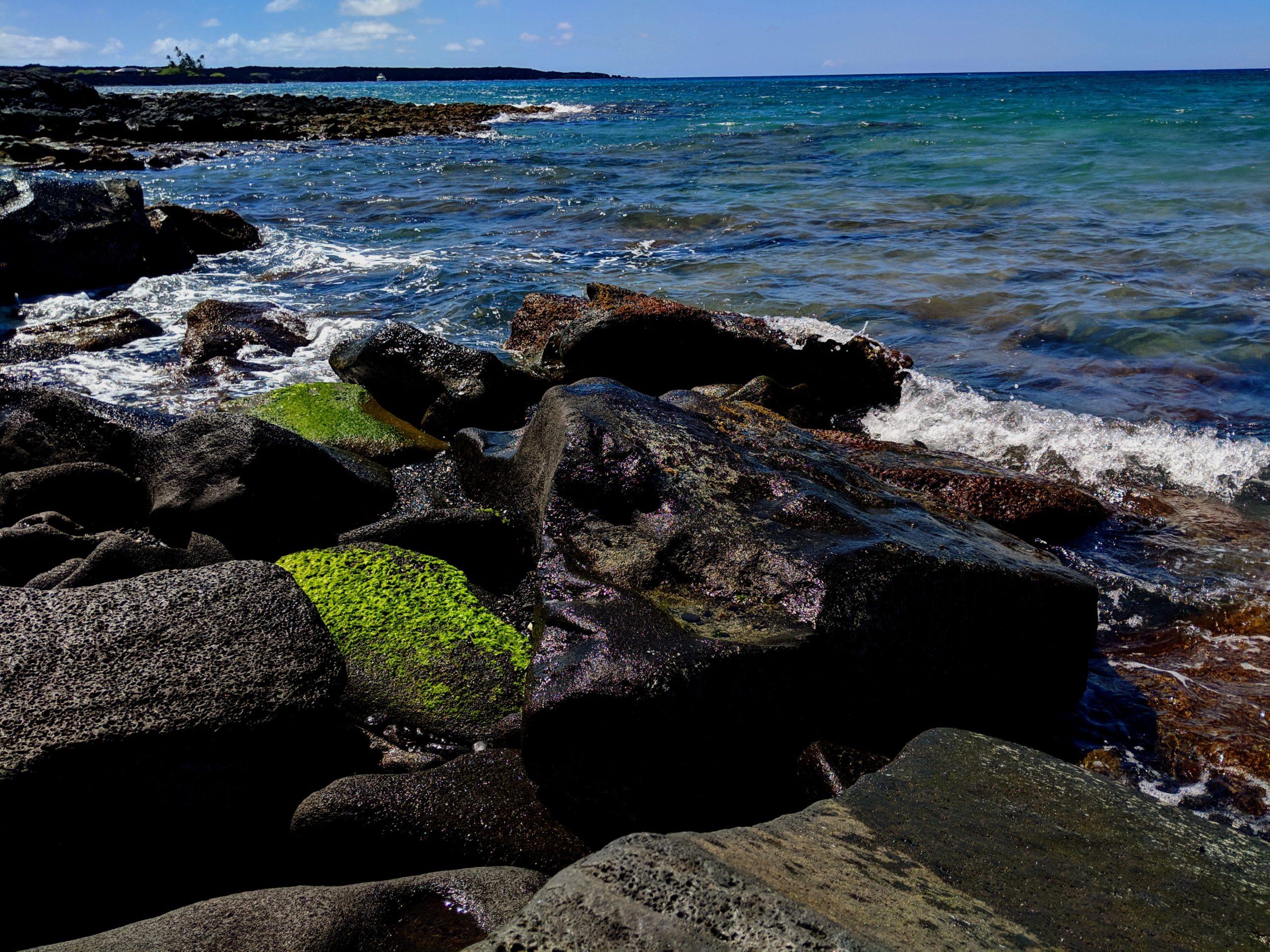 Hawai'i Island Spring 2019
